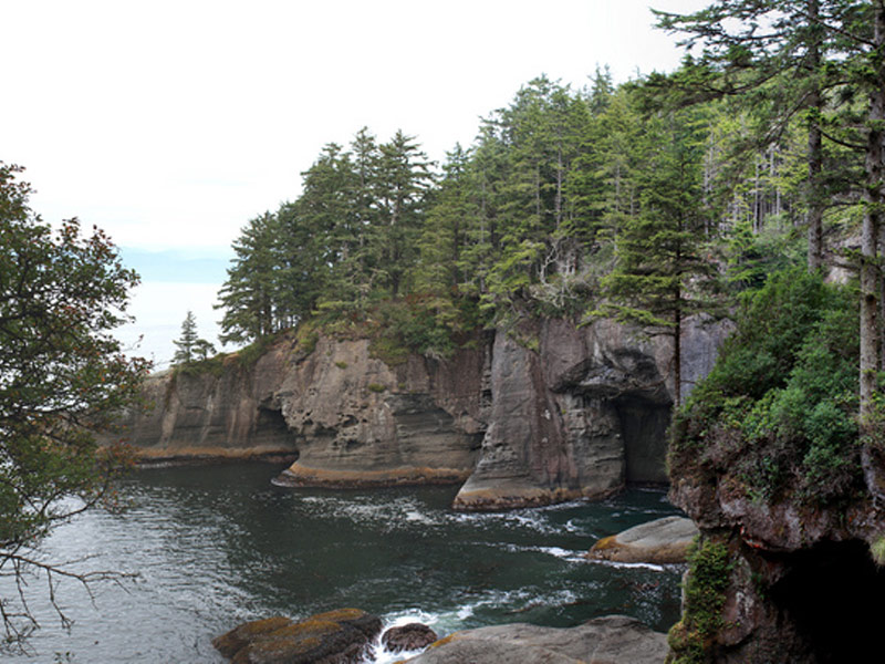 Cape Flattery Trail, Neah Bay