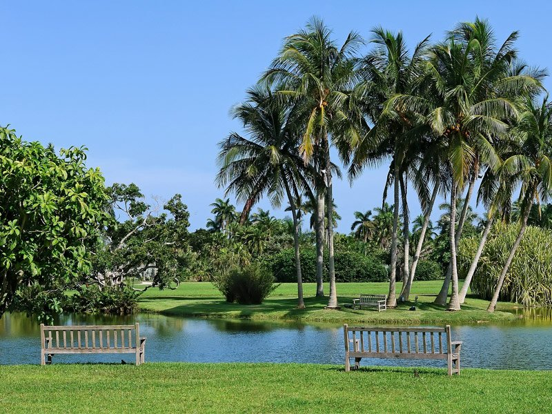 22 of the world s most magnificent gardens for Fairchild tropical botanic garden