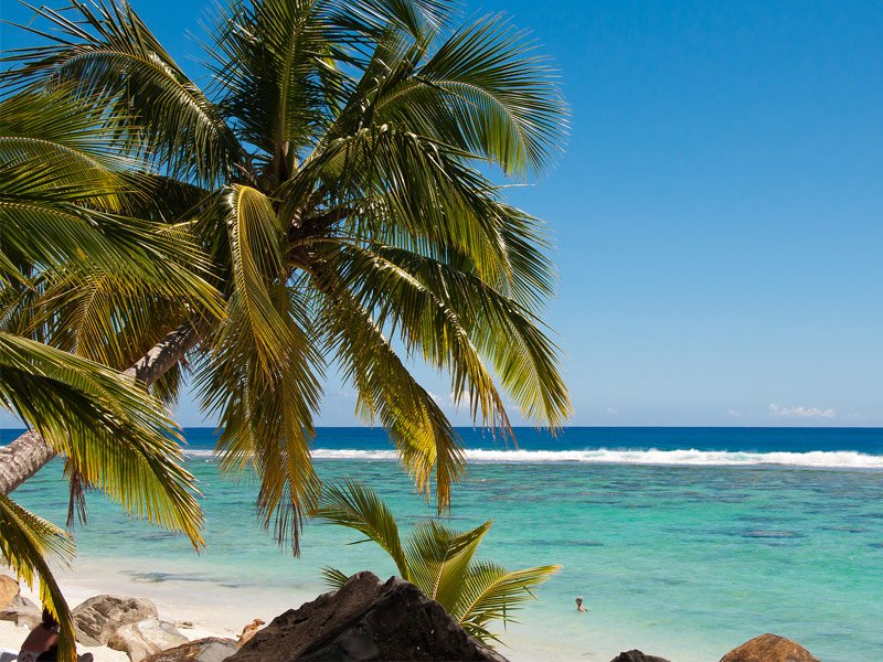 Of The Best Pacific Islands To Visit TripsToDiscovercom - 7 things to see and do in the cook islands