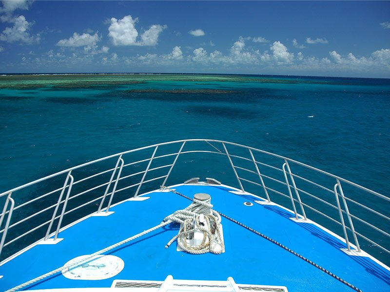 Great Barrier Reef Cruises