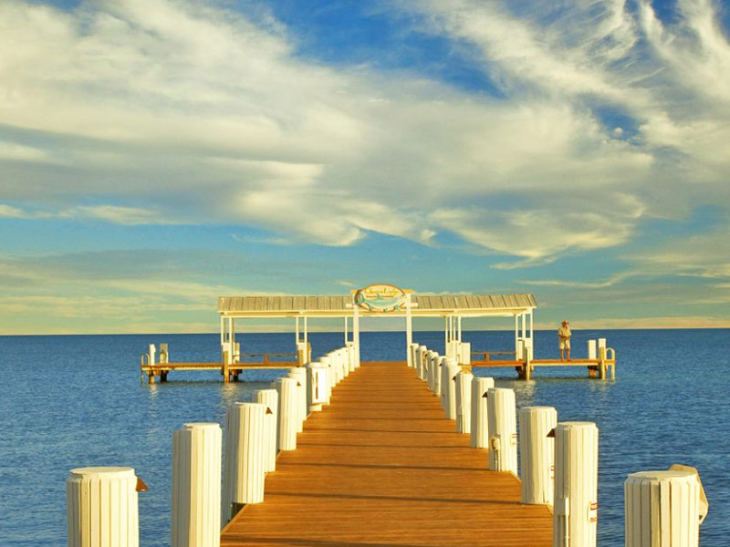 islamorada muslim singles Welcome to our reviews of the singles 240 (also known as cheap hotels in islamorada florida) check out our top 10 list below and follow our links to read our full in-depth review of each.