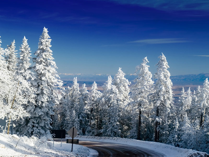 Best Winter Destinations for Snowshoeing