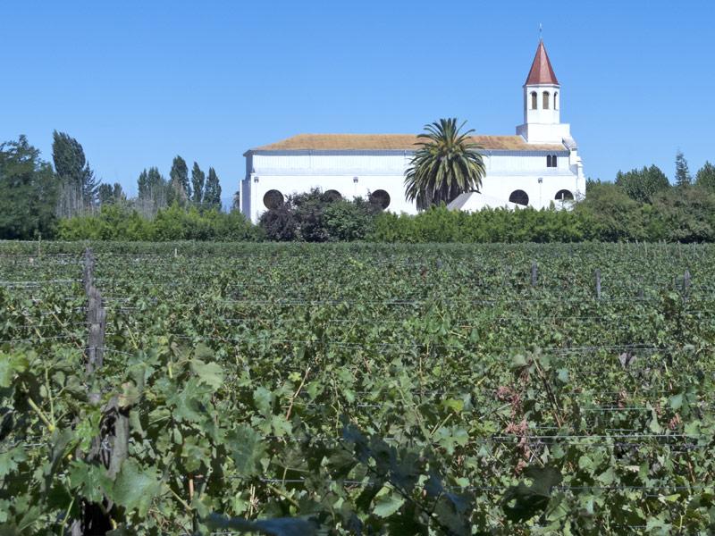 Rapel Valley Wineries
