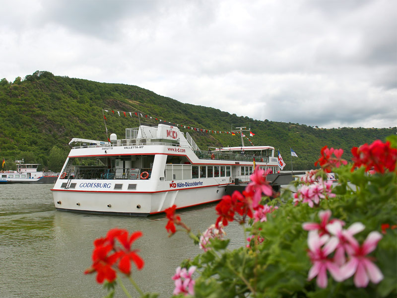 Rhine River Tour