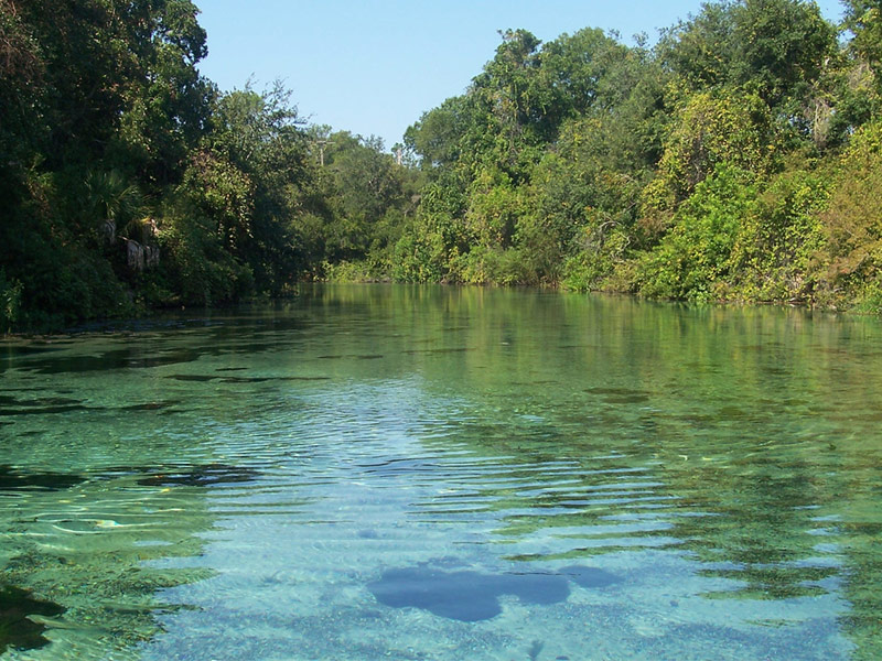 15 Beautiful State Parks In Florida To Visit