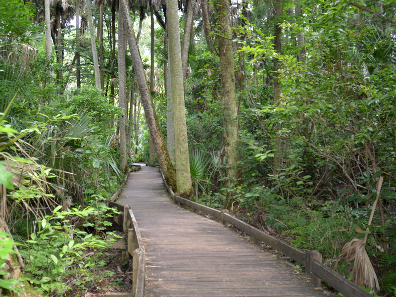 14 Essential Additions to Your Florida Summer Bucket List - TripsToDiscover.com