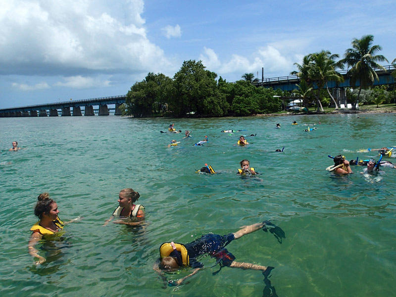 14 must visit snorkeling spots in florida with photos for Best fishing spots in the keys