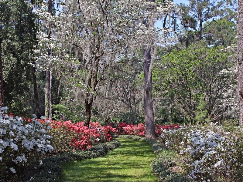 Here Are 10 Of The Most Beautiful Gardens That Florida Has