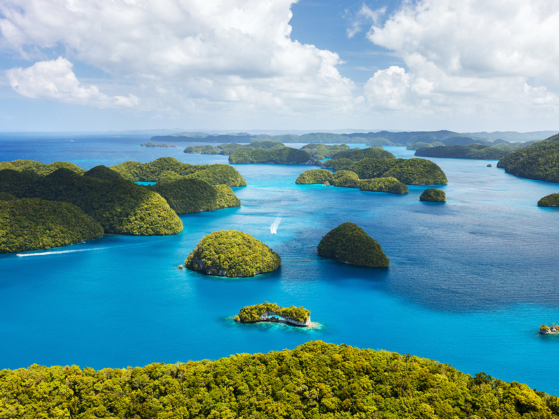 3 Luxury Hotels in Palau Where we Could Relax all Day ... |Palau Vacation
