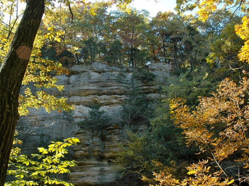 Wildcat Canyon at Starved Rock State Park