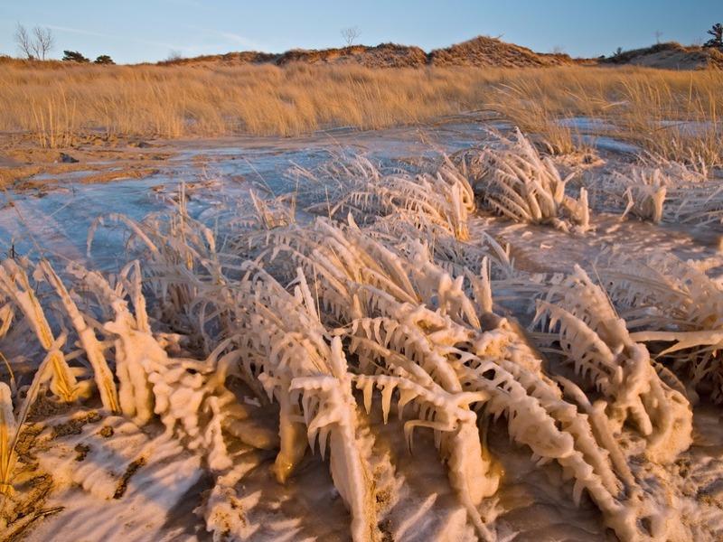 Winter Saugatuck Dunes State Park