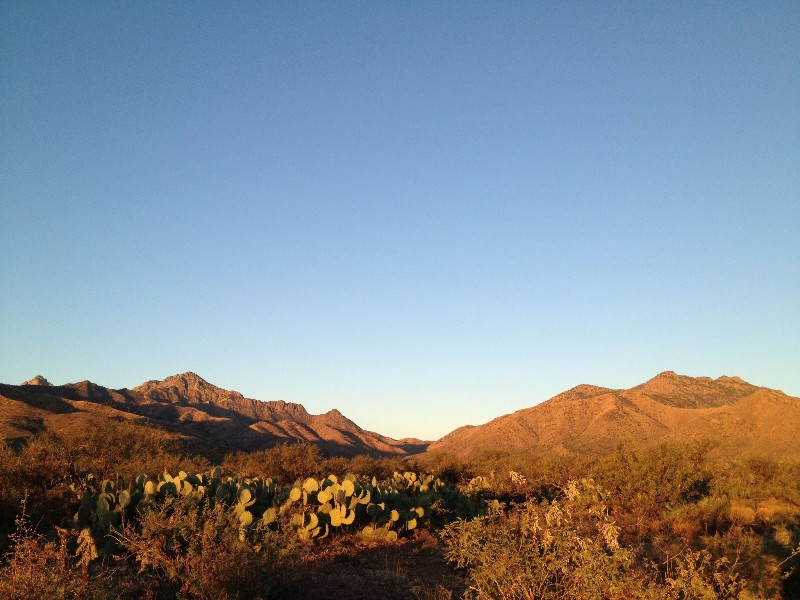 Top 10 arizona guest ranches for a fun getaway for Sprucedale ranch