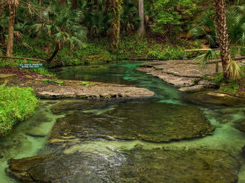 Rock Springs Run Is Florida S Natural Lazy River