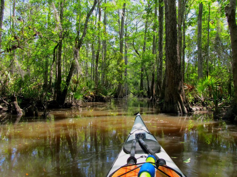 9 Best Places To Go Kayaking In Georgia With Photos
