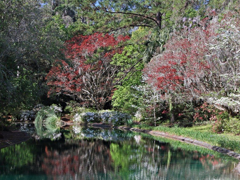 Florida S 12 Best Things To Do Outdoors This Fall