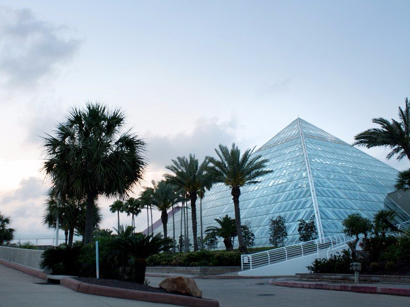 Learn Something New at Moody Gardens in Galveston, TX ...