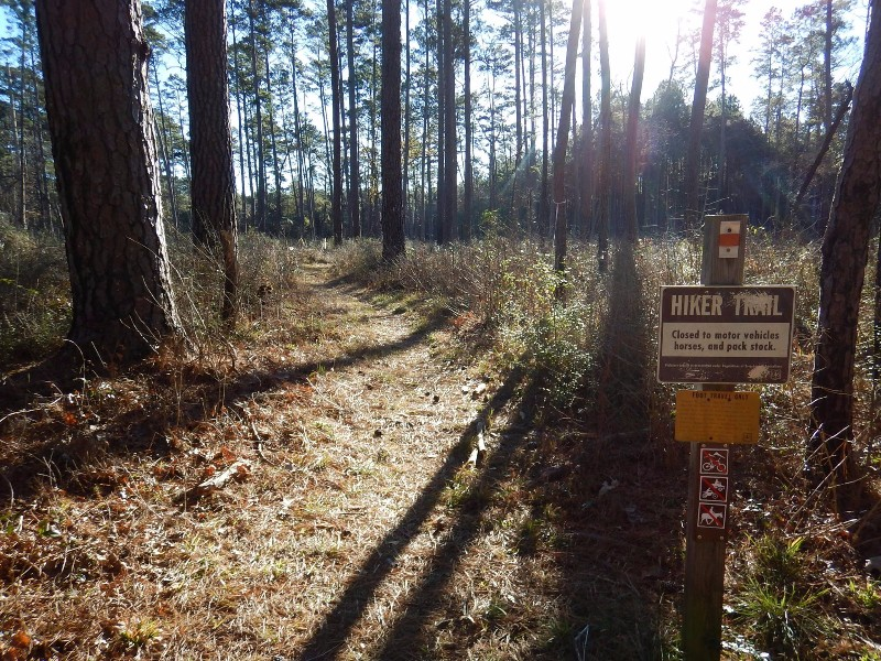 The Lone Star Hiking Trail Is The Only One Of Its Kind In