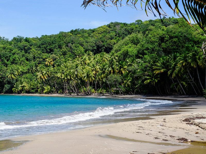Batibou Beach: Dominica