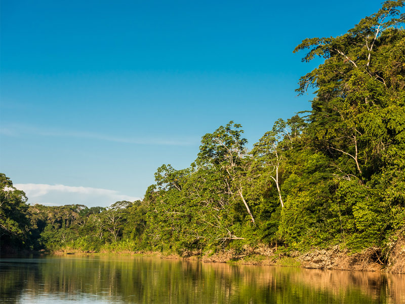 Explore the Amazon Jungle of Peru