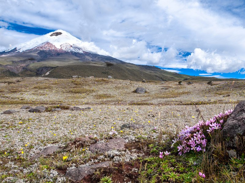 Explore the Volcanoes of Ecuador
