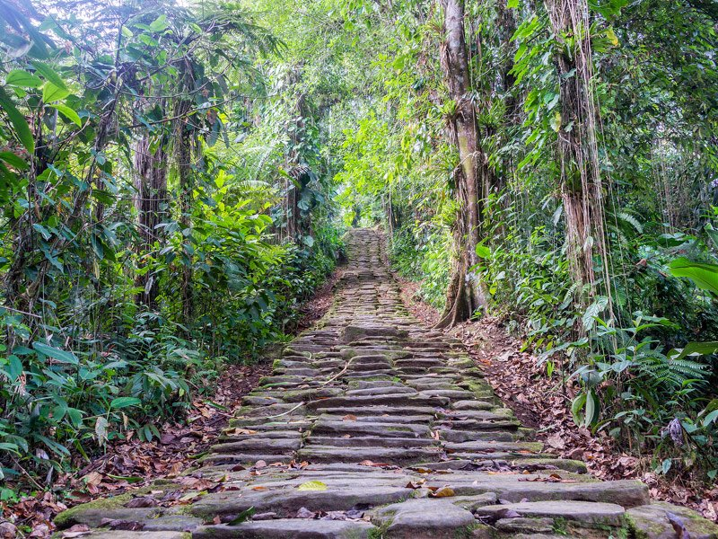 Trek to the Lost City of Colombia