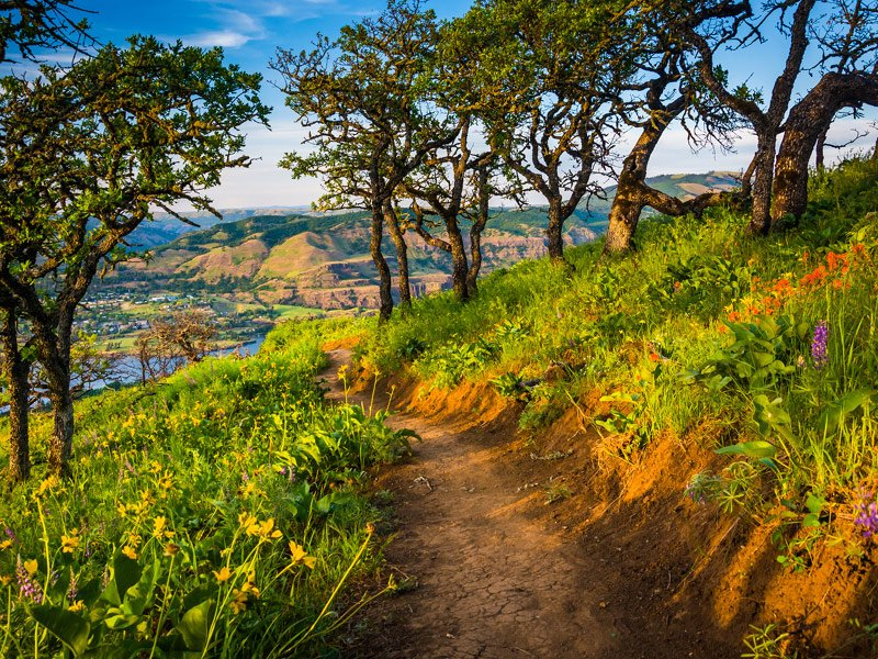 10 best things to do in oregon for 2019 with photos tripstodiscover rh tripstodiscover com best things to do in oregon in april best things to do in oregon and washington