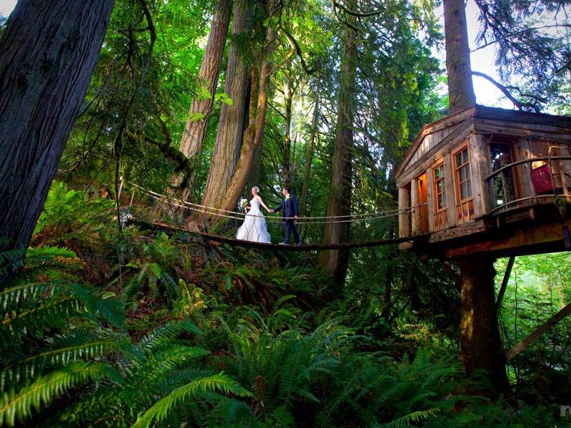 Treehouse Point in Issaquah, Washington