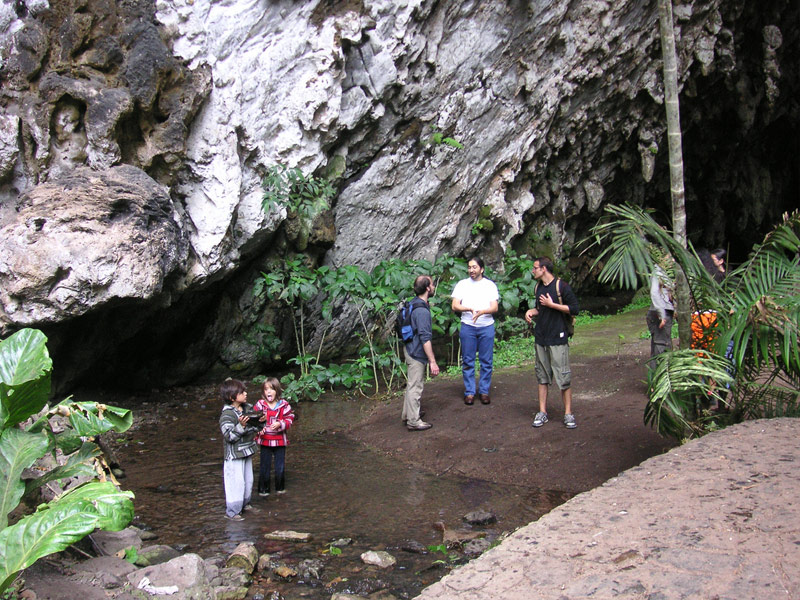 Cueva del Guacharo