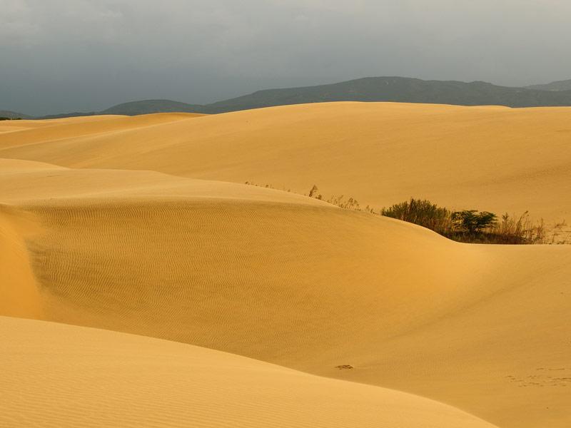 Dunes at Medanos de Coro