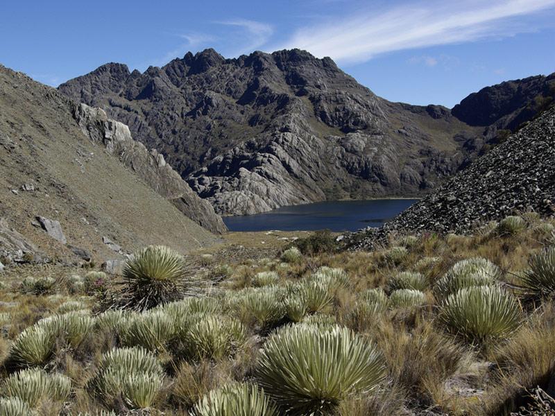 Sierra de La Culata