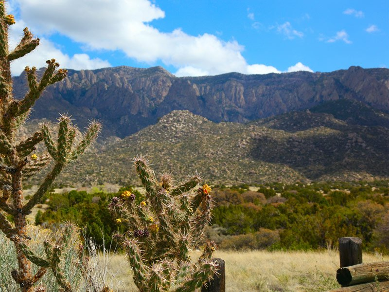 Amazing Things to Do in New Mexico - TripsToDiscover