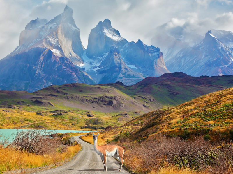 Patagonia South America >> Top Things to Do When Visiting Chile - TripsToDiscover