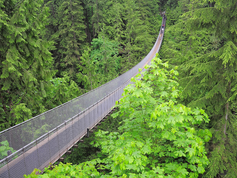 Capilano Suspension Bridge, North Vancouver, Canada