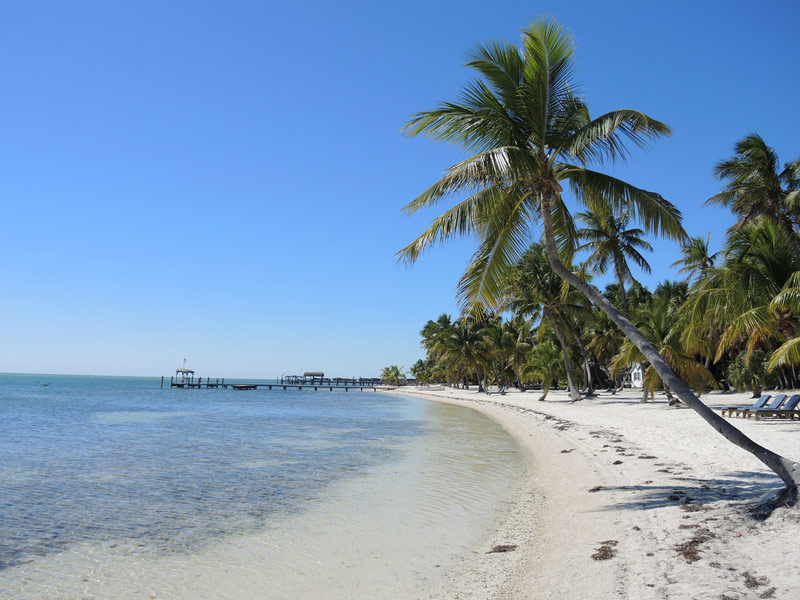 12 of the Best Places to Visit in South Florida ...