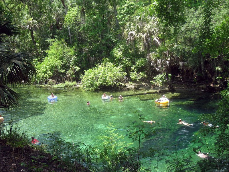 Top 11 Natural Springs In Central Florida In 2019 With