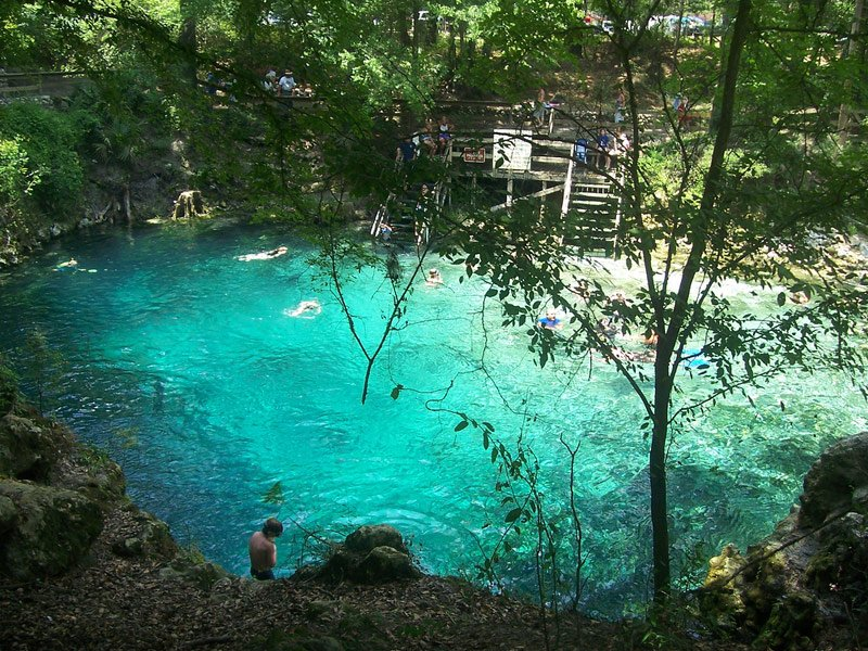 12 Epic Summer Swimming Holes In Florida Tripstodiscover