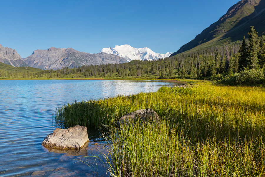 Wrangell-St. Elias National Park