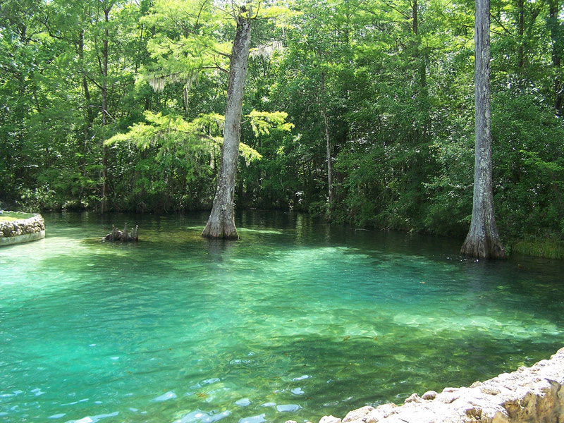 15 Beautiful State Parks In Florida To Visit Tripstodiscover