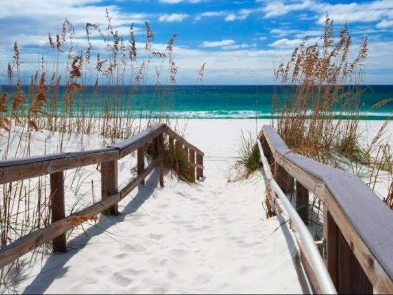 10 Best Things To Do In Pensacola Florida Tripstodiscover