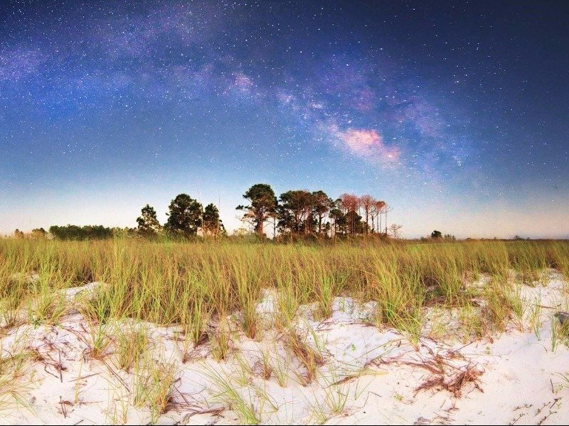 11 Breathtaking Places to Go Stargazing In Florida