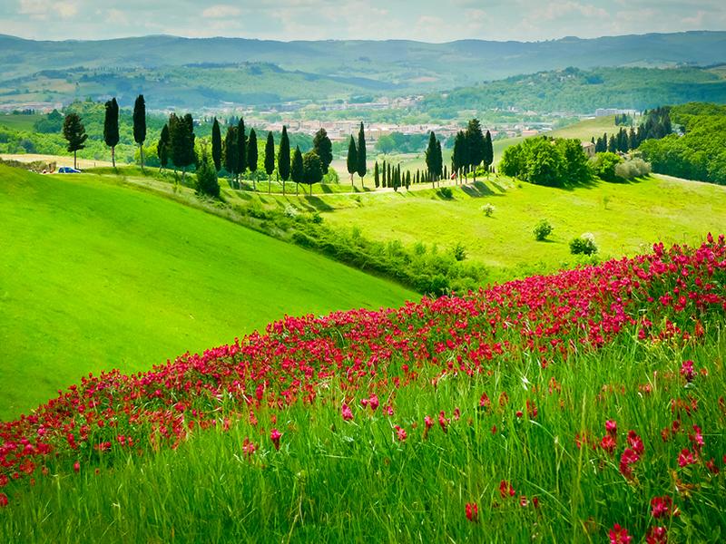 Hills Near Certaldo