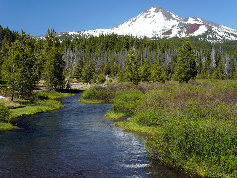 9 Best Things to Do in Bend, Oregon - TripsToDiscover