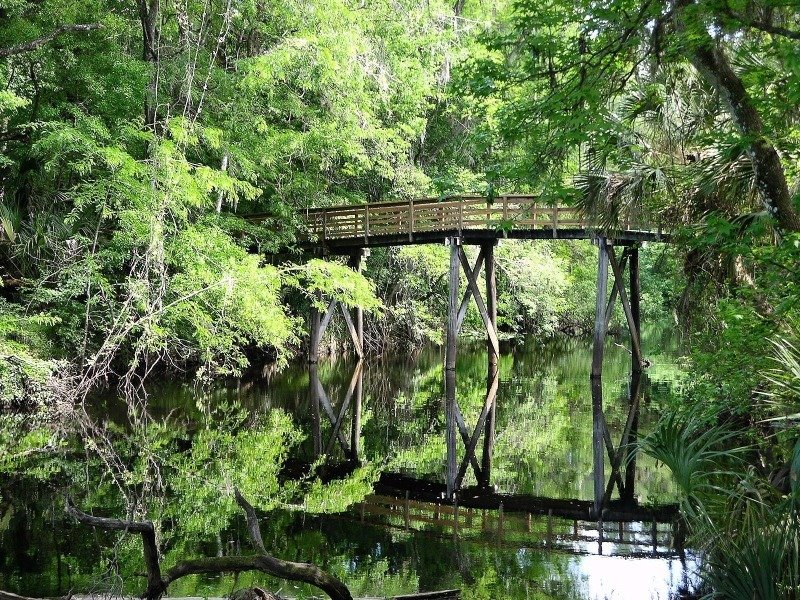 12 best places in florida to spend black friday outside for Hillsborough river fishing