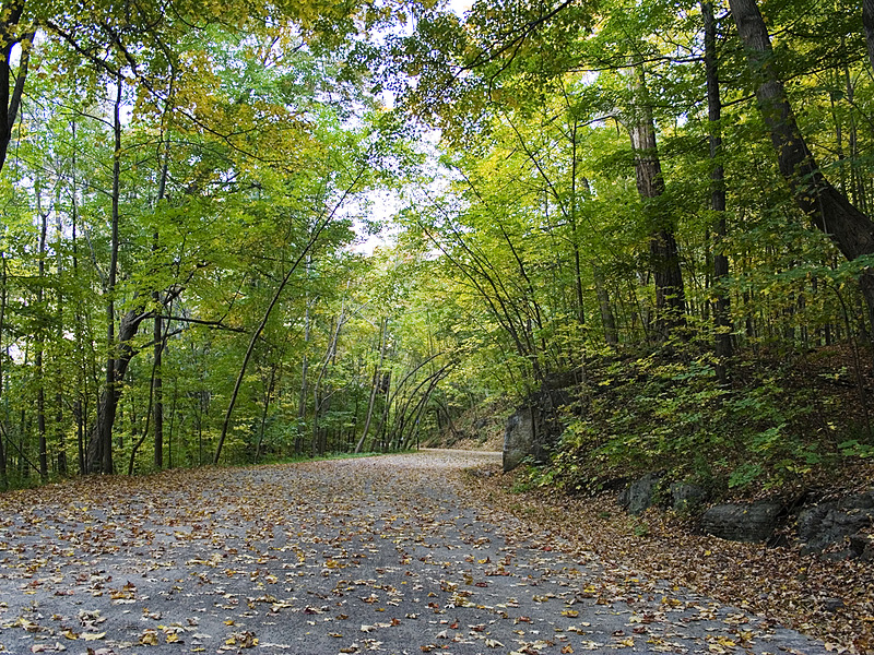 """""""The Alley,"""" Mont Royal Park, Montreal"""