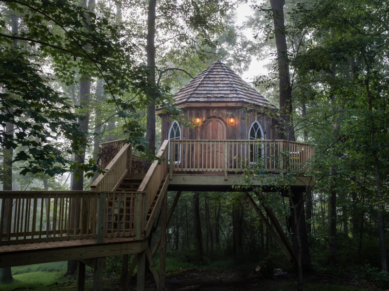 Designer Treehouses In Glenmont Hotel Prices Photos
