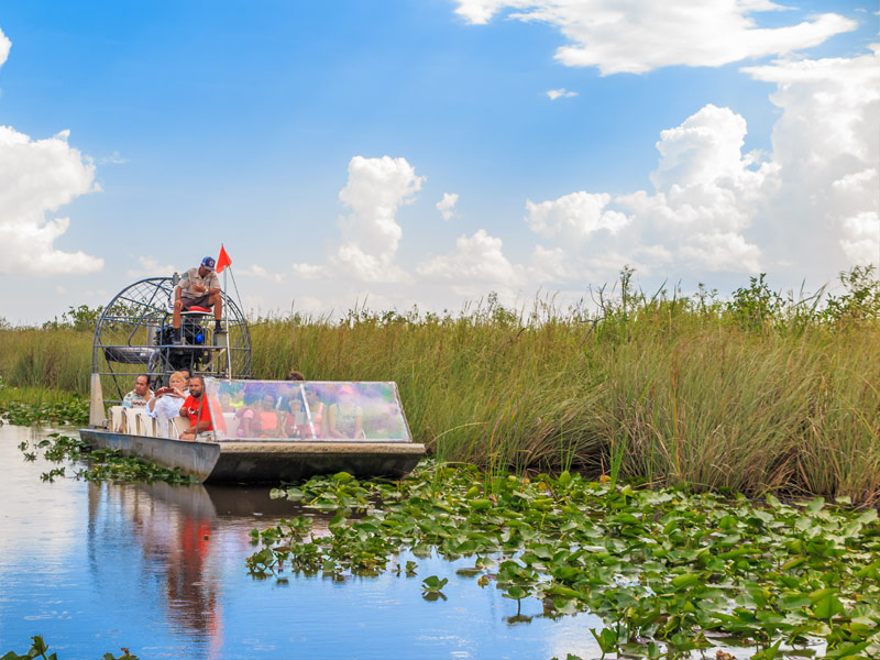 Take An Airboat Ride In The Everglades National Park Nearby Hotels