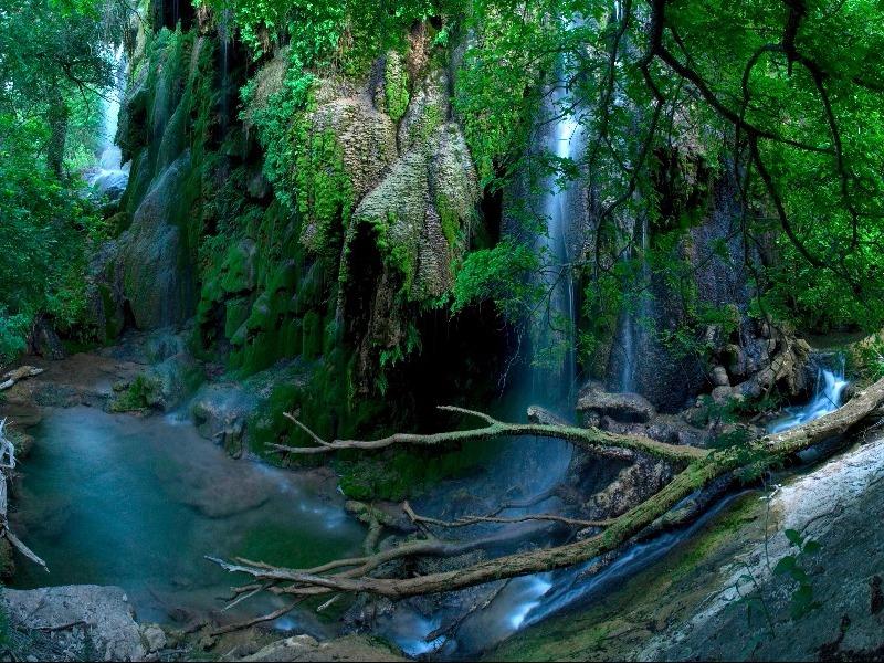Gorman Falls In Texas Is A Must Visit Natural Wonder