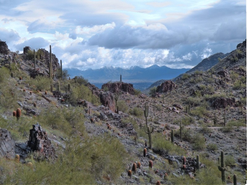 10 Best Hikes In Arizona For Beginners Tripstodiscover