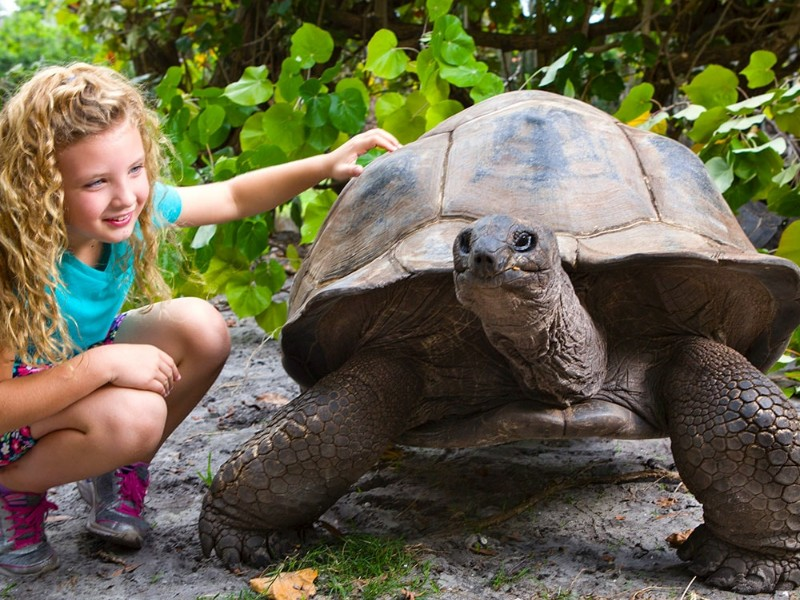 10+ Best Zoos to Visit in Florida (with Photos