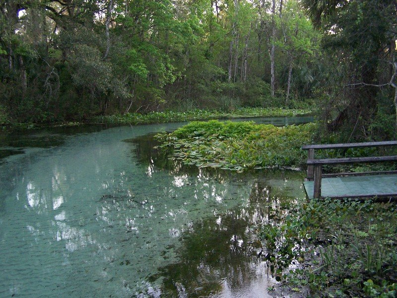 Rock Springs Run Is Florida S Natural Lazy River Local